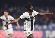 ultime parma infortunio gervinho